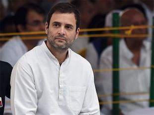 Congress party Vice President Rahul Gandhi|PTI