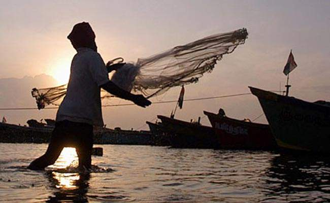 Many Indian fisherman from Tamil Nadu have been arrested by Sri Lanka in the recent past.|PTI